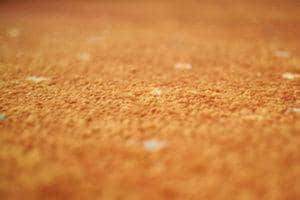 How To Find High-Quality Carpet Flooring