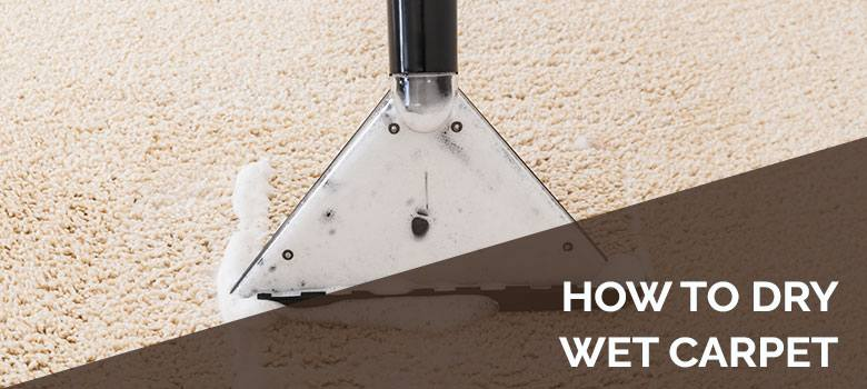 How To Dry Wet Carpet