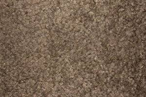 Features Of Nylon Carpeting