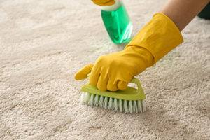 Hydrogen Peroxide To Remove Blood From Carpets