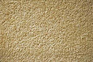 Types Of Carpet Fibers That Influence Texture