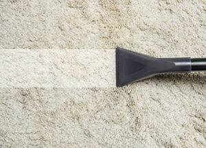 How To Clean Mold From Carpet