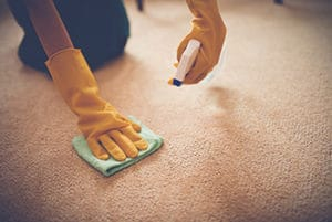 Preparations To Remove Lipstick From A Carpet