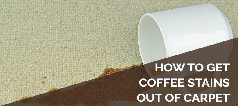 how to get coffee stains out of carpet