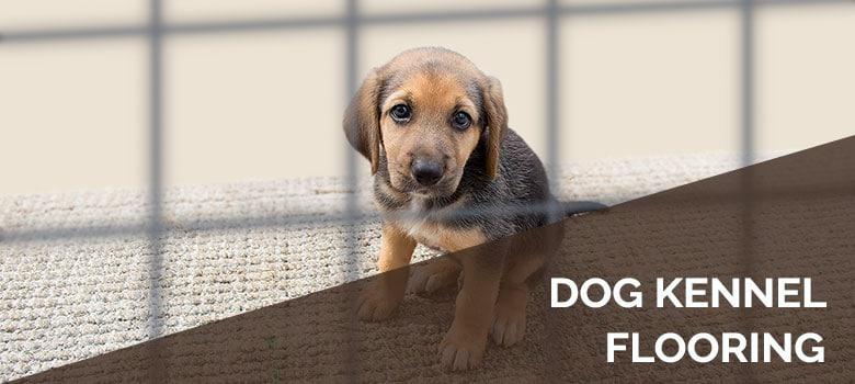 Best Dog Kennel Flooring 5 Top Picks